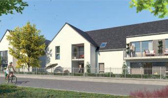 Amboise programme immobilier neuf « Le Hameau des Lys