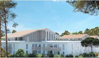 Capbreton programme immobilier neuve « Origin'Air » en Loi Pinel  (3)