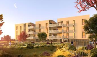 Mauguio programme immobilier neuve « Paseo »
