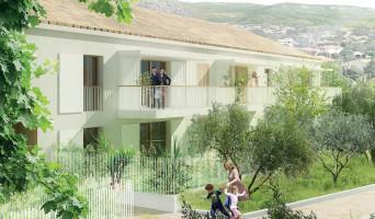 Toulon programme immobilier neuve « Terra Olea » en Loi Pinel  (2)