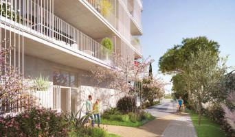 Marseille programme immobilier neuve « Éloquence » en Loi Pinel  (2)