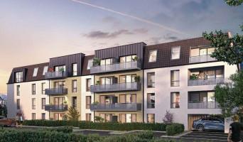 Bailleul programme immobilier neuve « La Van Belle »  (2)