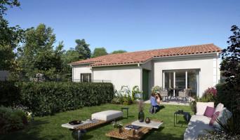 Pertuis programme immobilier neuve « Luberance »  (4)