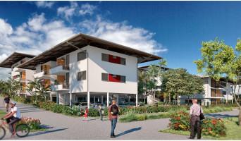 Remire-Montjoly programme immobilier neuve « La Caravelle »  (2)