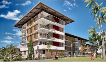 Remire-Montjoly programme immobilier neuve « La Caravelle »  (3)