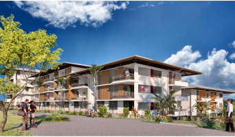 Remire-Montjoly programme immobilier neuve « La Caravelle »  (4)