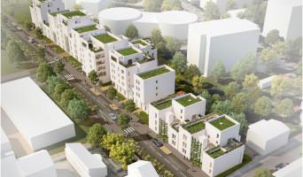 Villeurbanne programme immobilier neuve « Tempo »  (5)