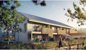 Orgères programme immobilier neuve « O'Bois »  (3)
