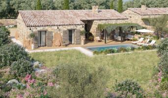 Zonza programme immobilier neuve « Les Bergeries de Pacialella »  (2)