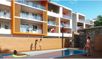 Cayenne programme immobilier neuve « Hadali » en Loi Pinel  (2)