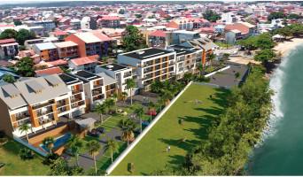 Cayenne programme immobilier neuve « Hadali » en Loi Pinel  (4)