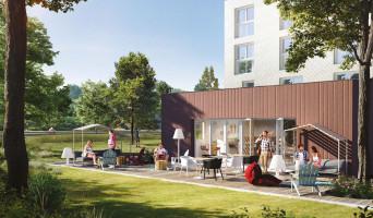 Pau programme immobilier neuve « Canopy »