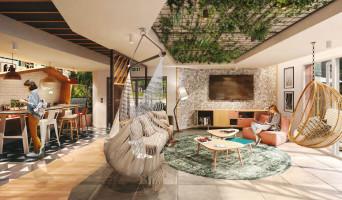 Pau programme immobilier neuve « Canopy »  (2)