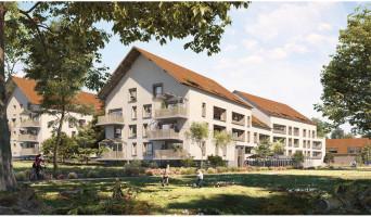 Tours programme immobilier neuve « Parc'coeur »