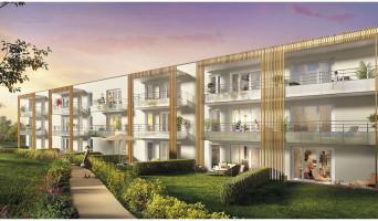 Lens programme immobilier neuve « Les Terrasses de Montgré » en Loi Pinel