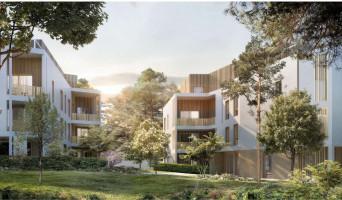 Collonges-au-Mont-d'Or programme immobilier neuve « Plein Saône » en Loi Pinel  (2)