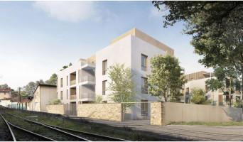 Collonges-au-Mont-d'Or programme immobilier neuve « Plein Saône » en Loi Pinel  (3)