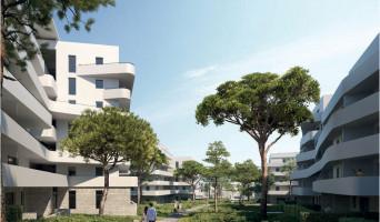 Marseille programme immobilier neuve « Seconde Nature » en Loi Pinel  (2)