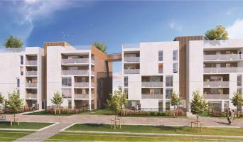 Tours programme immobilier neuve « Rooftop »  (2)