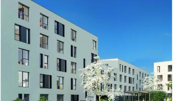 Roubaix programme immobilier neuve « Stud'Campus »  (2)