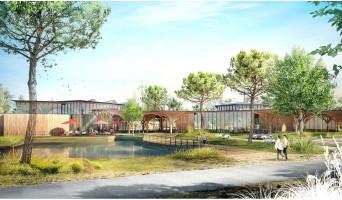 Beauziac programme immobilier neuve « Center Parcs Landes de Gascogne »  (2)