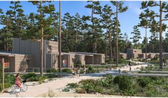 Beauziac programme immobilier neuve « Center Parcs Landes de Gascogne »  (3)