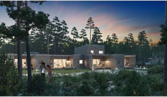 Beauziac programme immobilier neuve « Center Parcs Landes de Gascogne »  (5)
