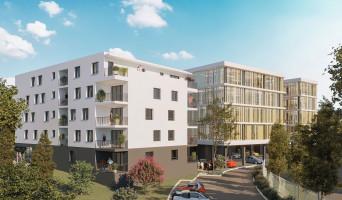 Dax programme immobilier neuve « Connexion »  (2)