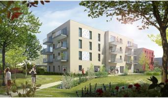 Armentières programme immobilier neuve « Carré des Octaves » en Loi Pinel  (2)