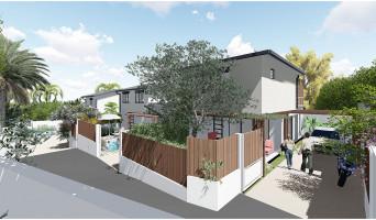 Saint-Pierre programme immobilier neuve « Longani »  (3)