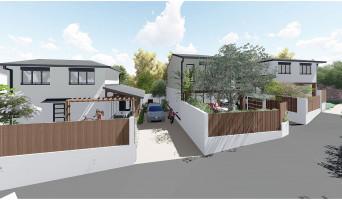 Saint-Pierre programme immobilier neuve « Longani »  (4)