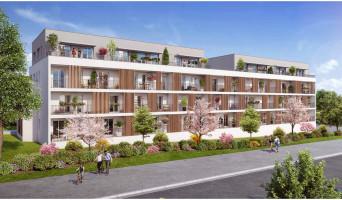 Verson programme immobilier neuf « Novaïa Maisons » en Loi Pinel