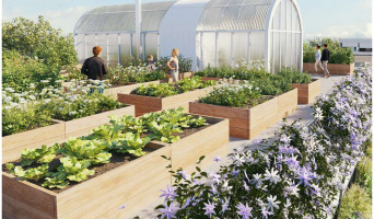 Toulouse programme immobilier neuve « Natura » en Loi Pinel  (4)