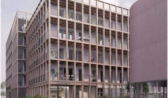 Nantes programme immobilier neuve « Carré des Sens » en Loi Pinel  (2)