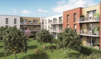 Nieppe programme immobilier neuve « Le Carré Fruit »