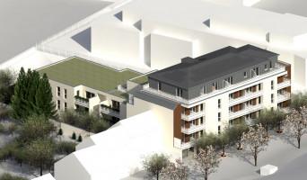 Angers programme immobilier neuf « Le Moringa