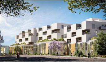 Tourcoing programme immobilier neuve « Flow » en Loi Pinel  (2)