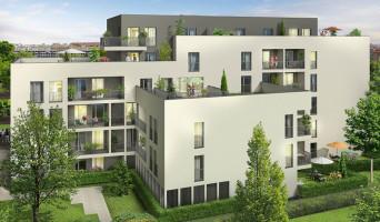 Villeurbanne programme immobilier neuve « Signature »  (2)