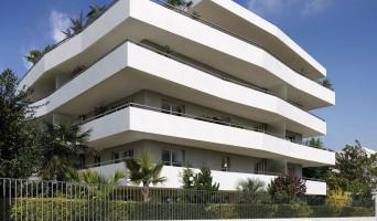 Marseille programme immobilier neuve « Vogue 8ème »  (2)