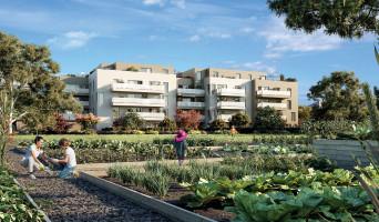 Vénissieux programme immobilier neuve « Eklose »