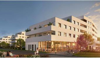 Amiens programme immobilier neuve « Les Jardins d'Arc »  (2)