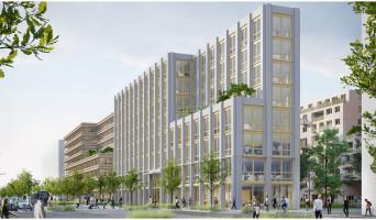Rouen programme immobilier neuve « L'Éveil de Flaubert » en Loi Pinel  (2)