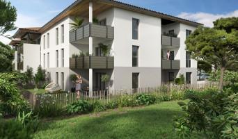 Saint-Paul-lès-Dax programme immobilier neuve « Les Fauvettes »  (2)