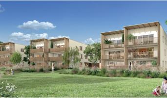 Carbon-Blanc programme immobilier rénové « Organic » en loi pinel