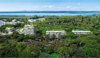 La Grande-Motte programme immobilier neuve « Cobá » en Loi Pinel  (3)