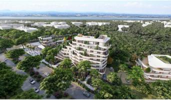 La Grande-Motte programme immobilier neuve « Cobá » en Loi Pinel  (4)