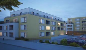 Colombelles programme immobilier neuve « Etoile d'Argent » en Loi Pinel  (2)
