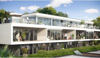 Mont-Saint-Aignan programme immobilier neuve « Le Domaine des Oliviers » en Loi Pinel  (2)