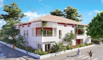 Biscarrosse programme immobilier neuf « Villa Trencat
