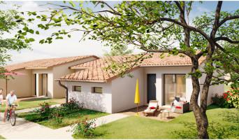 Montauban programme immobilier neuf « LMNP Los Amigos »